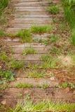 老木走道长满与绿草 免版税图库摄影