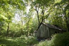 老木车间在森林里 免版税库存照片