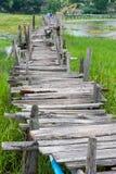 老木长的桥梁 库存照片