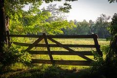 老木门,入口到绿色草甸里在一个晴天在罗马尼亚 库存图片