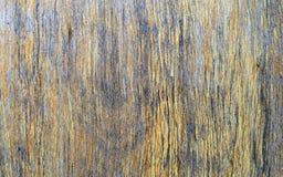 老木头被剥皮的破裂的棕色黄色纹理 免版税图库摄影