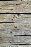 老木头被剥皮的破裂的自然白色纹理 免版税库存图片