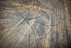 老木头崩裂纹理 免版税库存照片