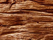 老木头 库存图片