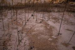 老未使用的白陶土矿 图库摄影