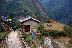 老村庄,越南 库存照片