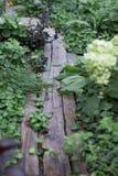 老板条道路在庭院里 库存图片