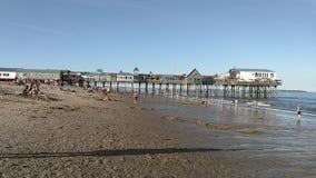 老果树园海滩码头 股票录像