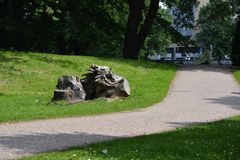 老树在一个晴天削减了词根和边方式 免版税图库摄影