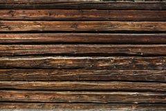 老树木繁茂的墙壁 免版税库存照片
