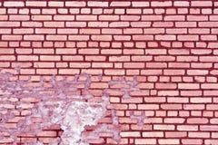 老桃红色被定调子的被风化的砖墙纹理 图库摄影