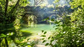 老桥梁在有流动的河的绿色森林里 股票视频
