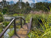 老桥梁在秋天有薄雾的公园 免版税库存图片