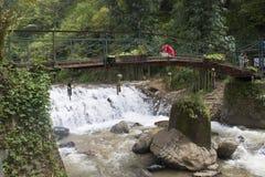 老桥梁在越南 库存图片