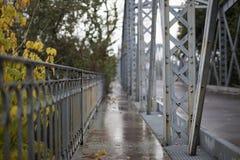 老桥梁路巴伦西亚 免版税图库摄影