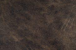 老棕色皮革纹理特写镜头 背景雀斑皮革纹理 图库摄影