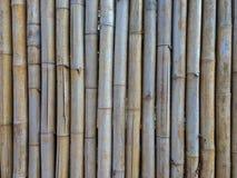 老棕色竹子为做篱芭、小屋或者墙壁家 免版税库存图片