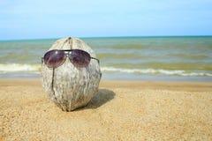 老椰子lounging在海滩 免版税库存照片