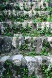 老楼梯在堡垒Spanjola 库存照片