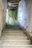 老楼梯 库存照片