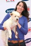 老海军全国性搜索的Andrea ・阿尔登一个新的似犬吉祥人。 富兰克林峡谷公园,贝弗莉山庄, CA. 04-29-06 库存照片
