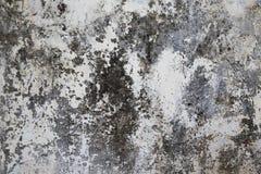 老涂灰泥的表面白色和灰色 免版税图库摄影