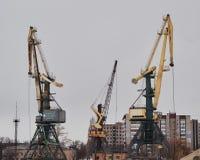 老港口起重机 库存图片