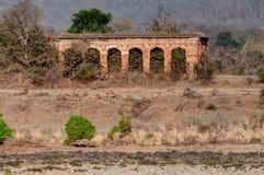 老潘纳堡垒,河和rivebed在潘纳国家公园,中央邦,印度 库存图片