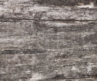 老灰色木纹理 库存照片