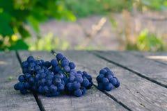 老灰色木表面上的成熟蓝色葡萄在庭院里 库存图片