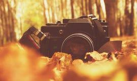 老照相机在森林 免版税库存照片