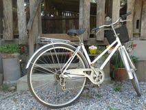 老牌生锈的白色自行车和木墙壁 库存图片