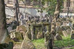 老犹太公墓在Josefov,布拉格,捷克 免版税库存图片