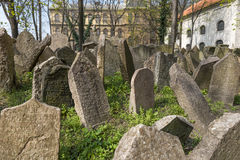 老犹太公墓在Josefov,布拉格,捷克 图库摄影