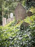 老犹太公墓在Trebic,捷克语 库存照片
