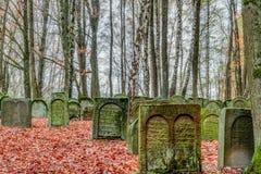 老犹太坟园在德国巴伐利亚 免版税库存图片