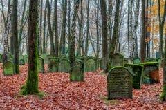 老犹太坟园在德国巴伐利亚 库存图片