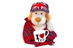 老狗相似与有茶杯的英国人 免版税图库摄影