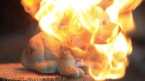 老玩具狗熔化在火下热的火焰  慢的行动 影视素材
