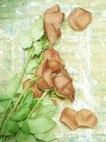 老玫瑰和木头 免版税库存图片