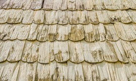 老瓦由木背景纹理制成 库存图片