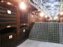 老瓶在行的酒在葡萄酒库里 许多酒瓶行在酿酒厂地窖存贮的 美好的纹理或 免版税图库摄影