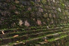 老生苔墙壁的图象在天时间的背景用法 免版税图库摄影