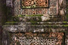老生苔墙壁的图象在天时间的背景用法 库存图片