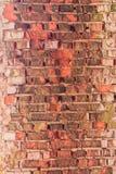 老生苔砖墙 免版税库存照片