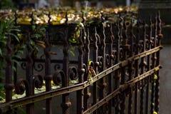 老生锈的金属篱芭, 库存照片