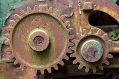 老生锈的齿轮长满与绿色青苔 免版税库存图片