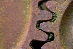老生锈的齿轮长满与绿色青苔f 免版税图库摄影