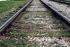 老电车路轨,特写镜头,夏天秋天,在睡眠者草、石渣和石头之间在城市 图库摄影