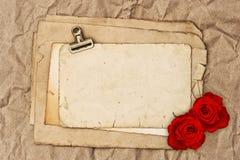 老白纸和两朵玫瑰色花 免版税库存图片